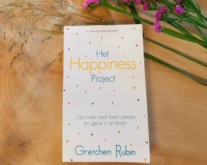 Foto van de cover van Het Happiness Project van Gretchen Rubin.